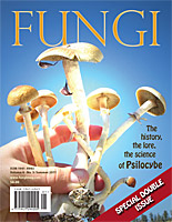 Fungi Magazine Special Issue Psilocybe Mushrooms